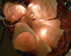 feest/kerst lampjes